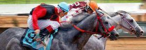 quarter-horse-racing