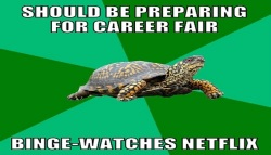 turtle career fair meme